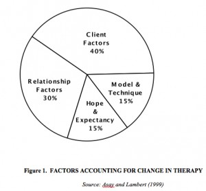 Factors accounting for change in therapy