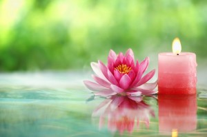 Hakomi Psychotherapy: An Introduction